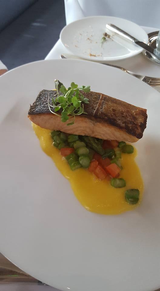 Salmon - German Gym